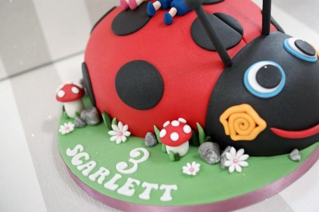ladybird-3rd-birthday-cake (3)