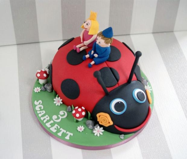 ladybird-3rd-birthday-cake (4)