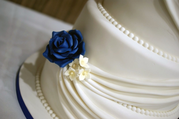 3-tier-wedding-cake-drapes-and-roses-with-cupcake-tower (11)