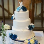 vintage-butterfly-wedding-cake (2)