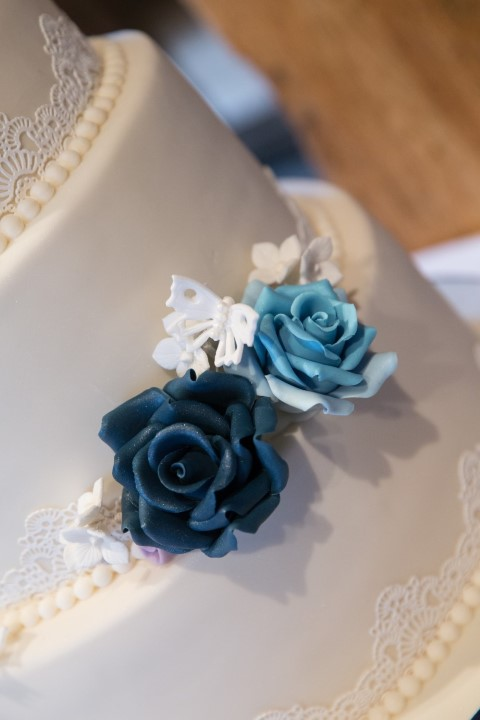 vintage-butterfly-wedding-cake (6)
