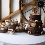 woodland-theme-wedding-cake-tree-stump-with-cupcakes (3)