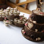woodland-theme-wedding-cake-tree-stump-with-cupcakes (9)